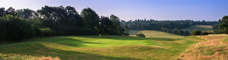 Home-golf-club-2