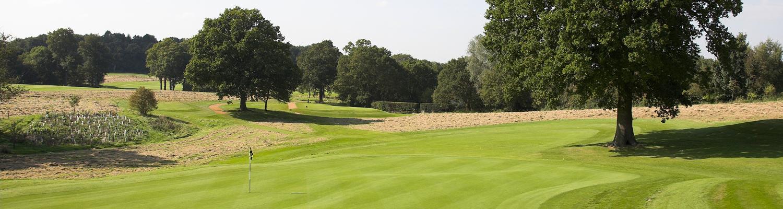 Home-golf-club-5